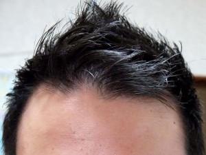 薄毛短髪正面