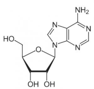 アデノシン